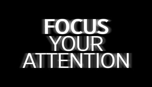 Focus-Your-Attention-Photography photography-Focus-Your-Attention-Photography-500x288